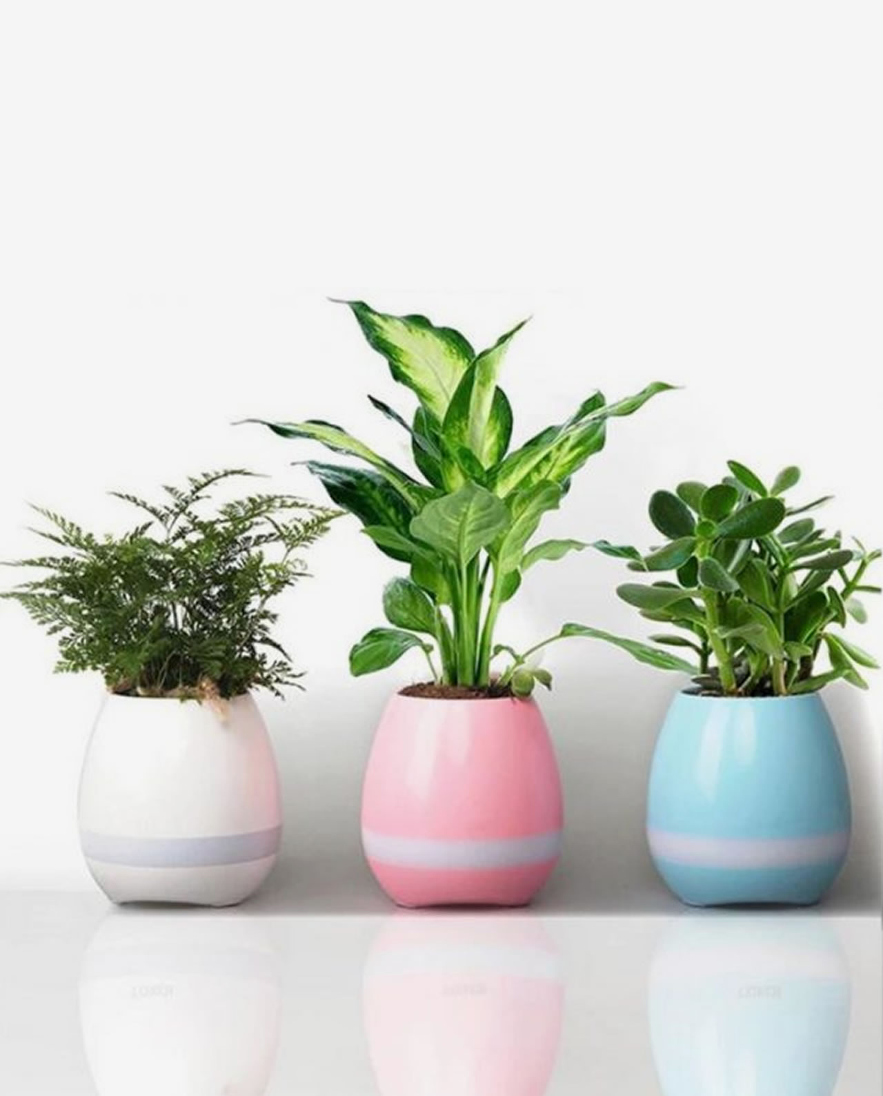 magic flower pot speaker hdtv entertainment. Black Bedroom Furniture Sets. Home Design Ideas
